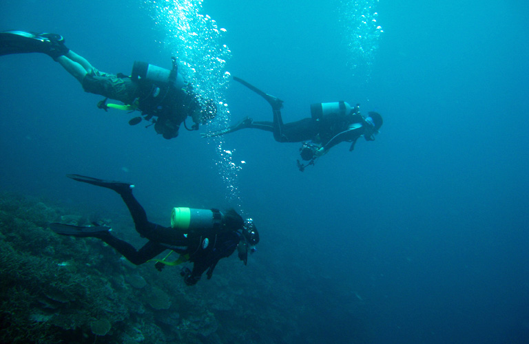 ダイビング免許取得、海洋講習で3本目のダイビング!!