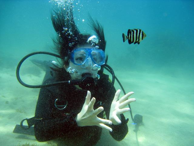 体験ダイビング海遊び6