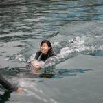 ☆ダイバーでなくても!!4人集まれば!ドルフィンスイム★&魚群ダイビング&地元グルメ 《マグロ》《関サバ》とにかく楽しめるツアー開催!!のイメージ
