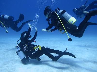 GoToを使って、お得に沖縄でダイバーになろう(^^)/  日にちによって講習費は変わるけど、『☆全てコミコミ料金で、88,000円~!』!のイメージ